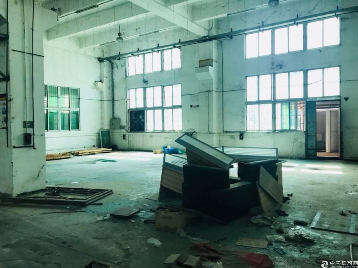 观澜新出一楼6米1250平带航车重工业厂房招租-图4