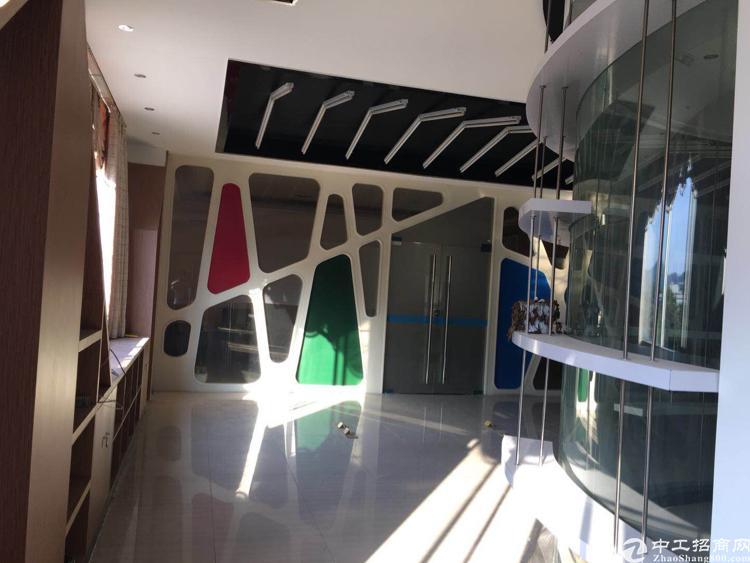 坪山独院6800平方米出租可分租-图4
