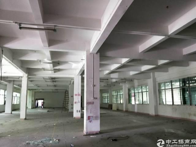 常平工业园分租标准厂房一楼