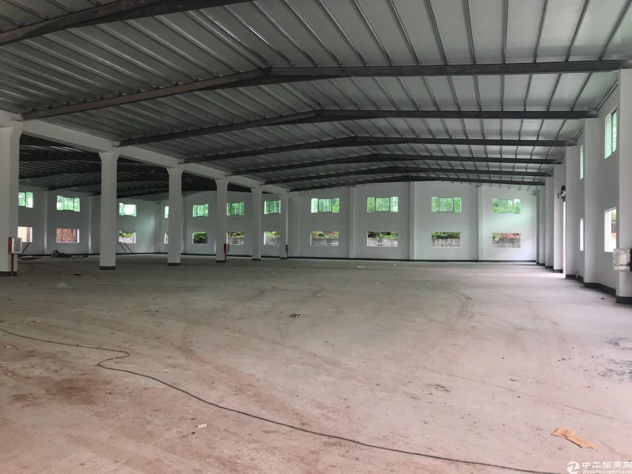 沙田新空出6000平方单一层钢构厂房-图2