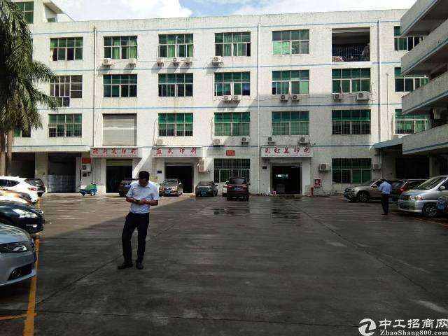 平湖华南城边上新出一楼1280平方标准厂房招租