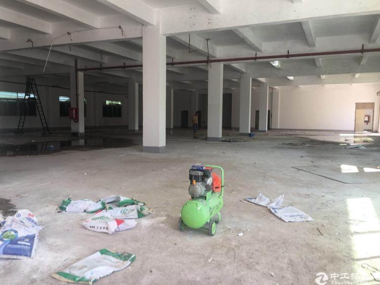 坪山新出独院5600平标准厂房出租可分-图4