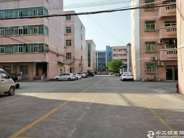 同乐原房东红本厂房一二楼各1000平方出租、可分租