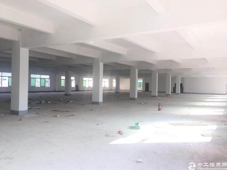 坪山新出独院5600平标准厂房出租可分-图3