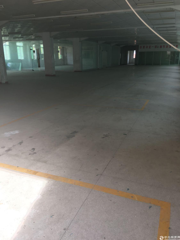塘夏新出独院厂房6500平出租,原房东高速入口旁边-图5