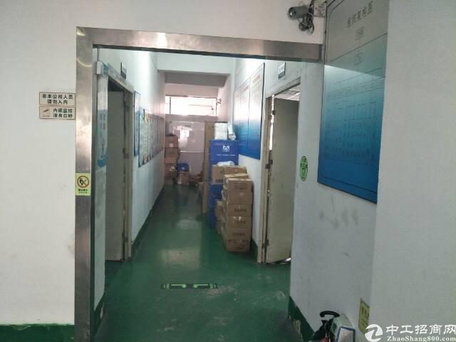 西乡固戍银田工业区附近1200平方租金28元