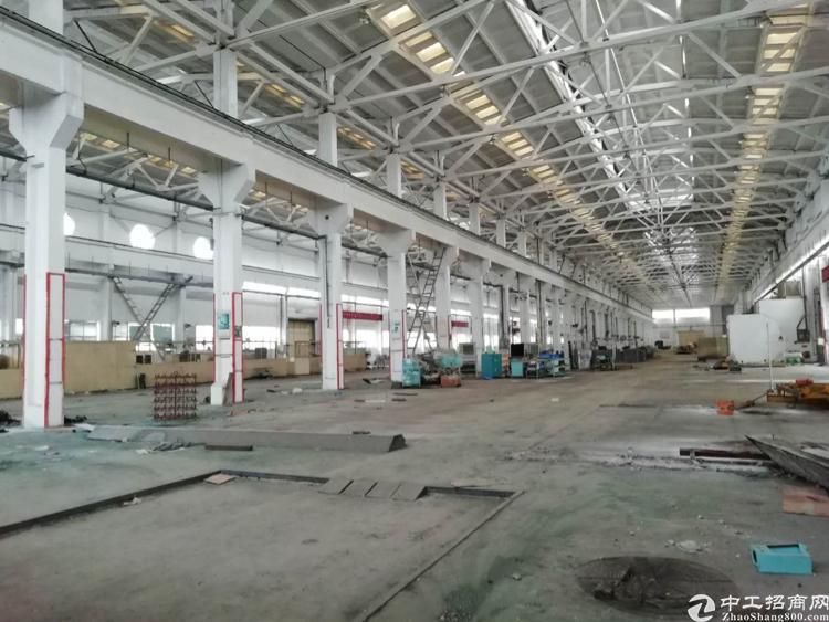 福永塘尾宝安大道旁、34000平米钢构、面积实在