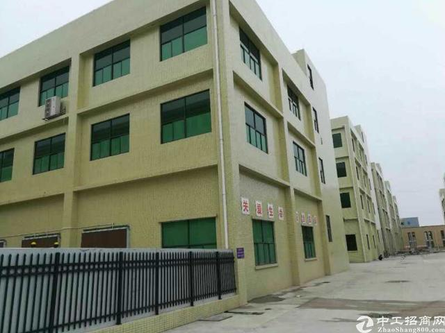 惠州政府扶持项目80万平方米出租中
