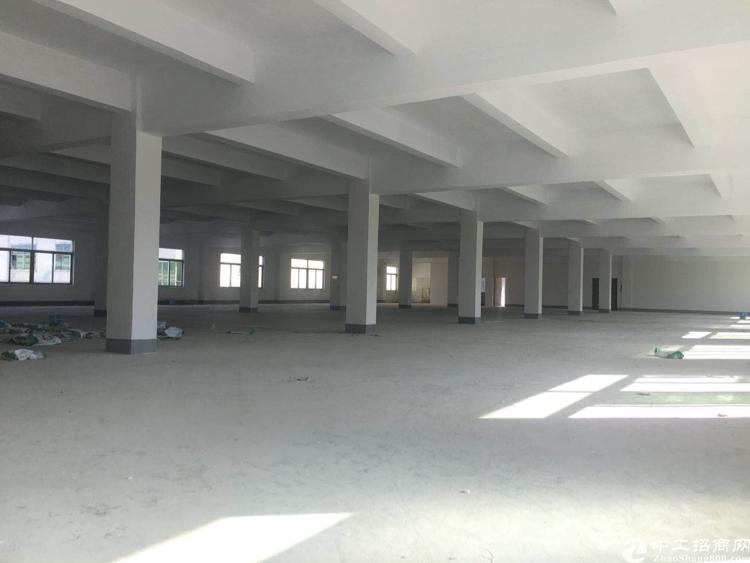 坪山新出独院5600平标准厂房出租可分