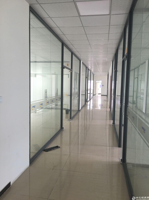 塘夏新出独院厂房6500平出租,原房东高速入口旁边-图3