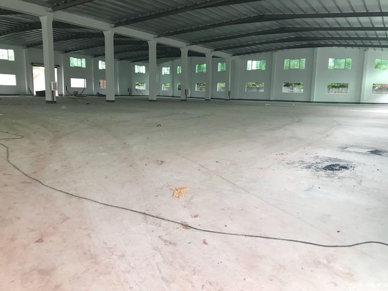 沙田新空出6000平方单一层钢构厂房