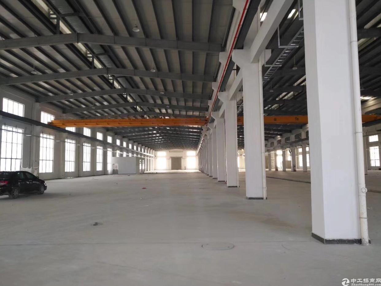 惠州沥林镇独栋钢结构厂房