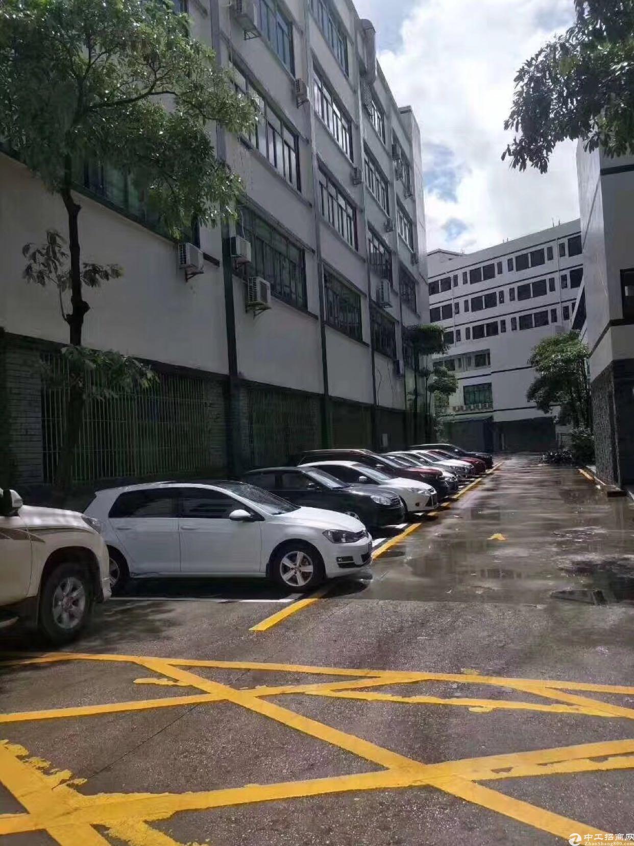 龙华福龙路出口豪华精装修厂房出租,无任何装让费