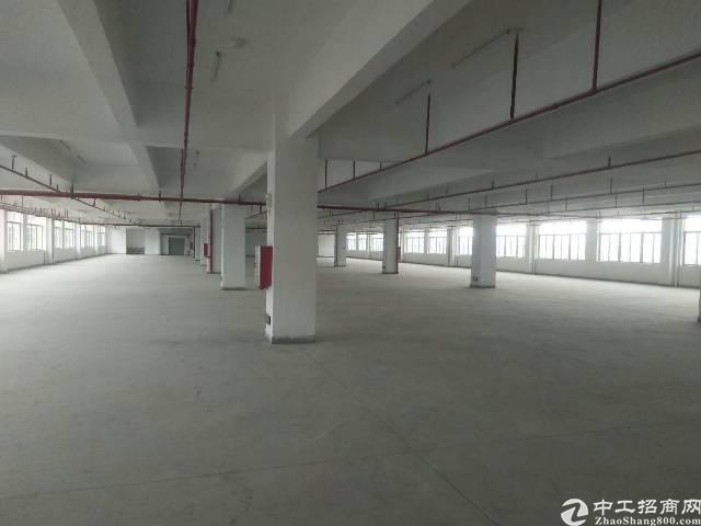 惠州小金口工业区内独院3600平标准厂房出租!-图2