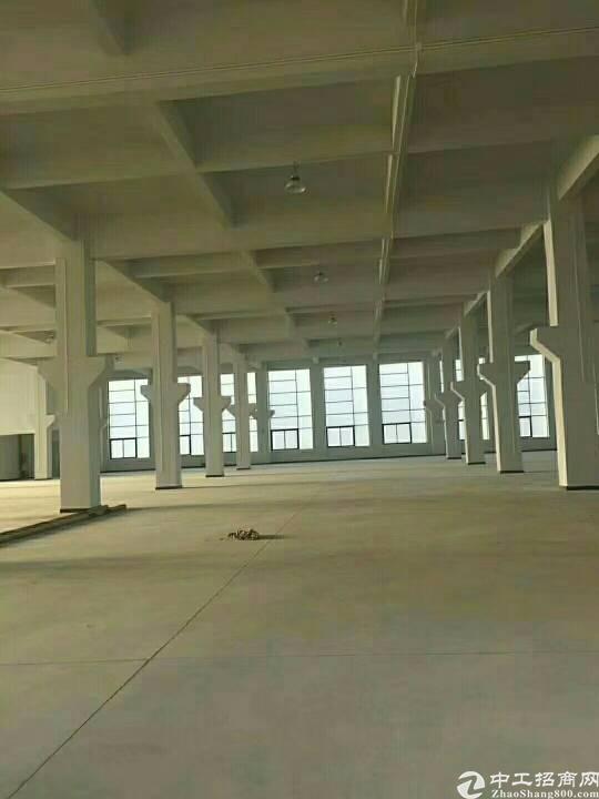 位于临深圳光明新区位置新出16000平方标准带牛角