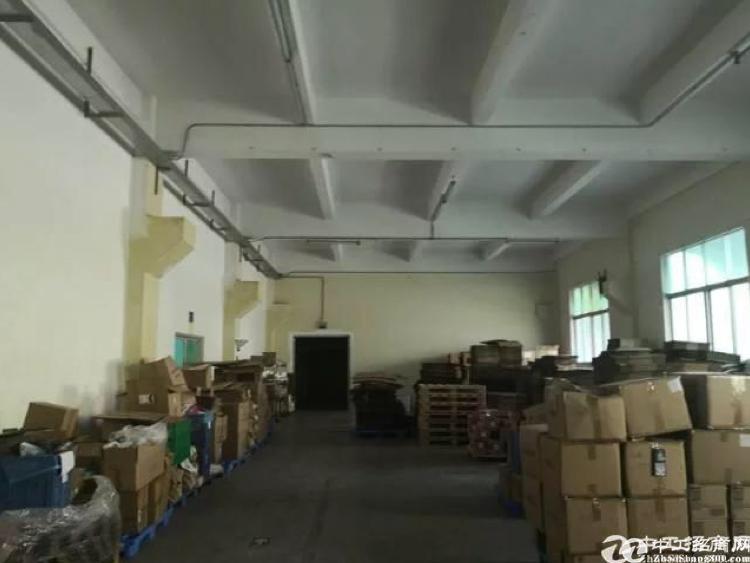 坪山新出350平一楼标准厂房,高4米