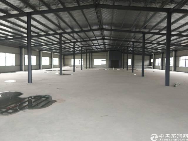 陈江镇甲子工业区滴水7米高独院钢构厂房3000平方米-图3