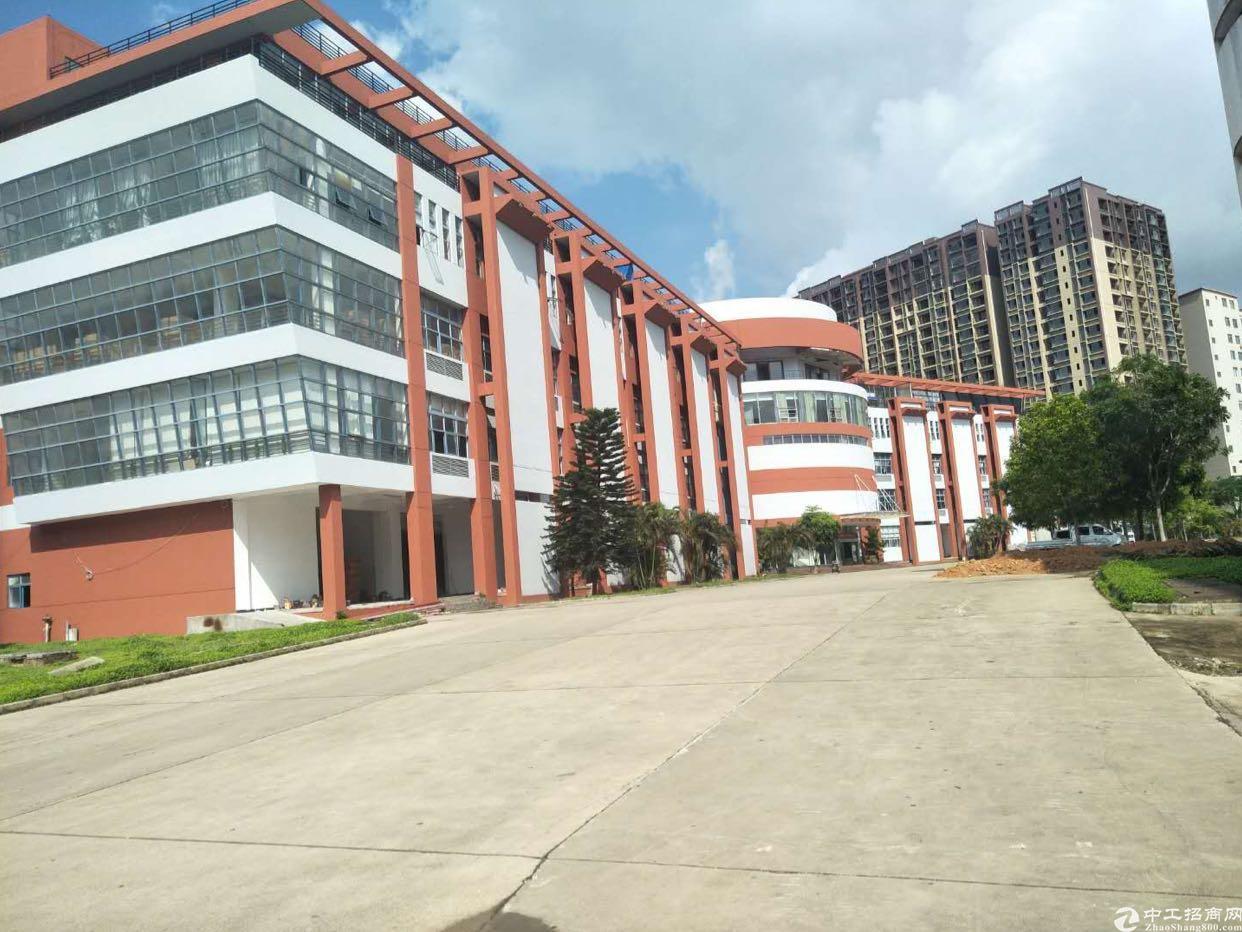 带红本房产证双证齐全独院厂房70000平米招租