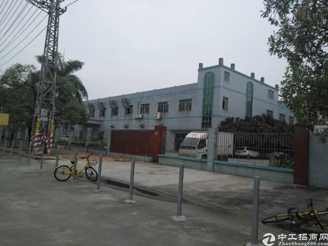 石碣新出独院厂房4800平米招租