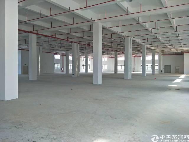 原房东红本独院带消防喷淋单层5千平方米5吨货梯