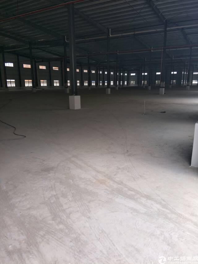 新出钢构可做抽立厂房