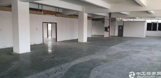 石岩科技园区厂房出租1300平方-图3