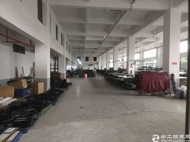 松岗罗田新出独院厂房35000平方米有红本原房东低价招租