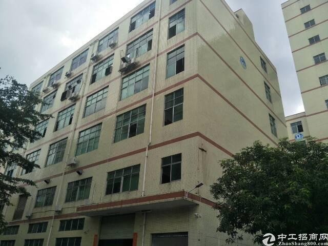 公明李松朗新出一楼5高标准厂房