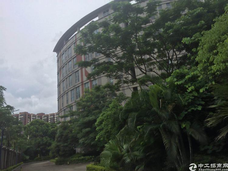 观澜高大上原房东花园式独院红本厂房7000平方招租