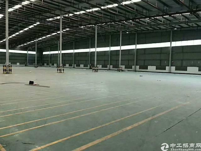 布吉李朗地铁站附近钢构2300平方,大小面积可分租,层高6米-图3