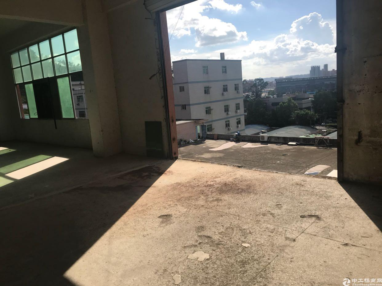 观澜新田观平路旁楼上厂房出租