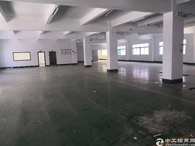 (出租)横岗西坑独门独院5500平招租
