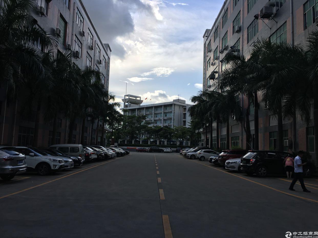 龙华汽车站附近1000平厂房,面积实在