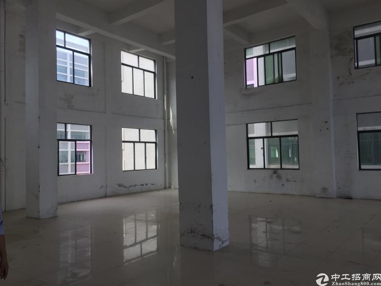 全新厂房招租空地大拖头可调头高度七米标准厂房