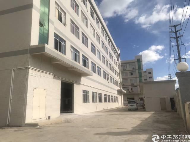 平湖华南城附近新出一楼1400平方带牛角厂房招租