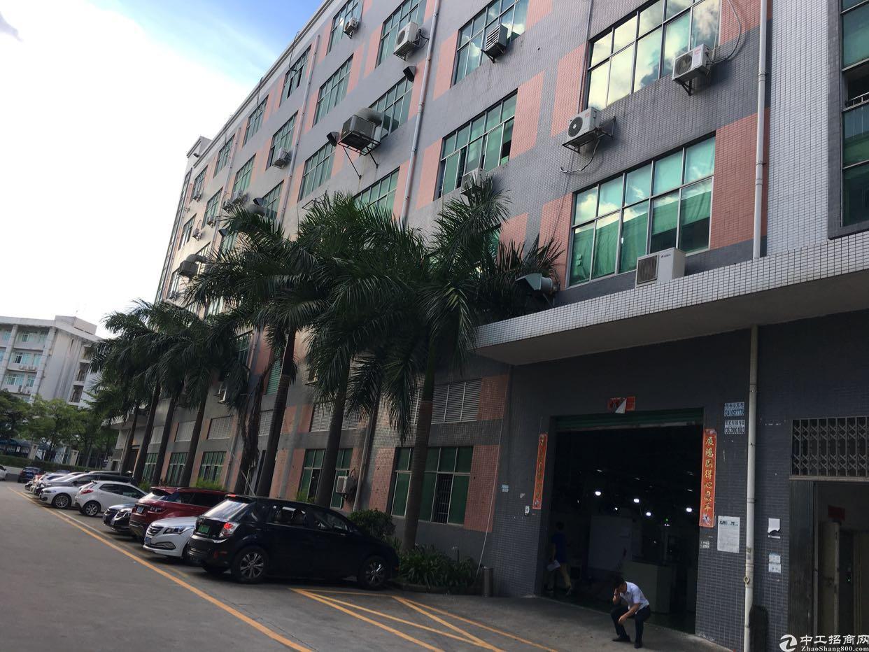 龙华汽车站附近1000平厂房,面积实在-图2