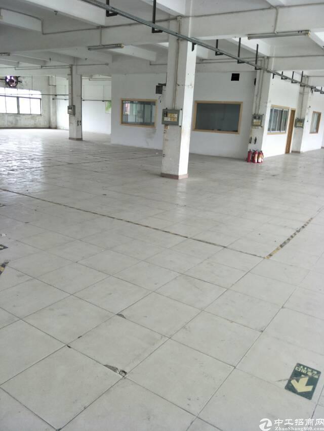 石排镇成熟工业区招租二楼