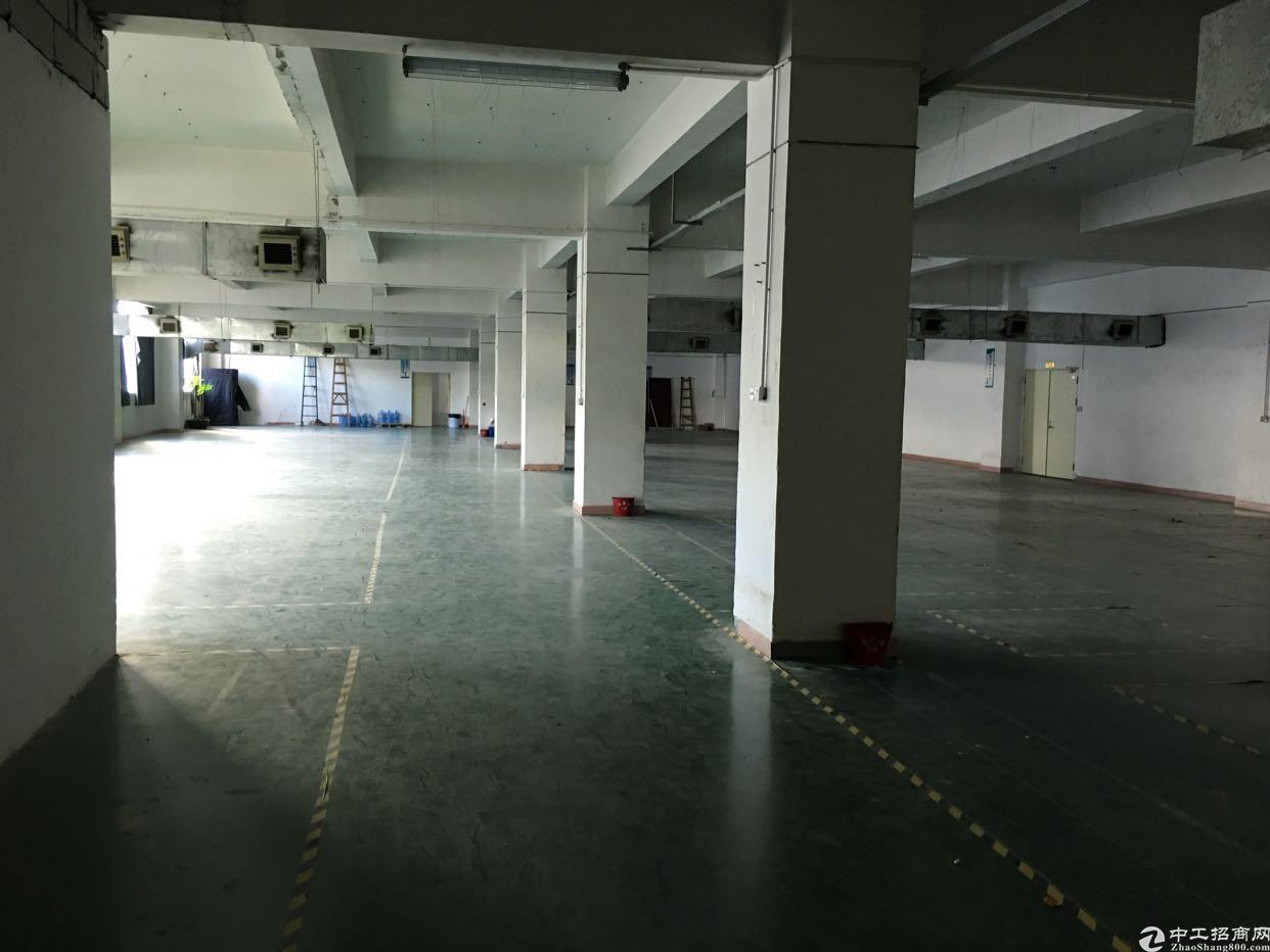 龙华汽车站附近1000平厂房,面积实在-图4