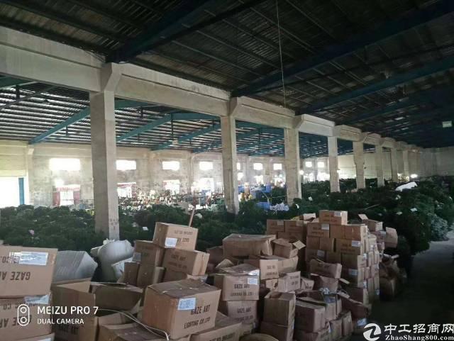 惠州镇隆原房东2530平钢构厂房