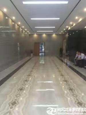 龙岗坪山全新精装修小户型50平至750平写字楼