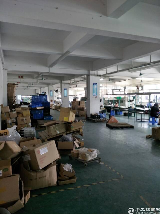 标准厂房二楼2500平方米招租