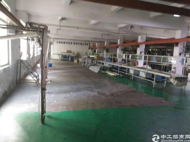西丽应人石附近新出厂房招租,独门独院,大小可分