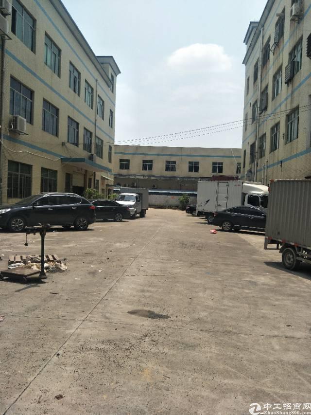 龙岗龙东标准厂房一楼,滴水6.5米,空地超大