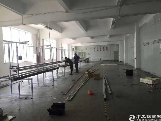平湖华南城新出独院8000平方红本厂房-图2