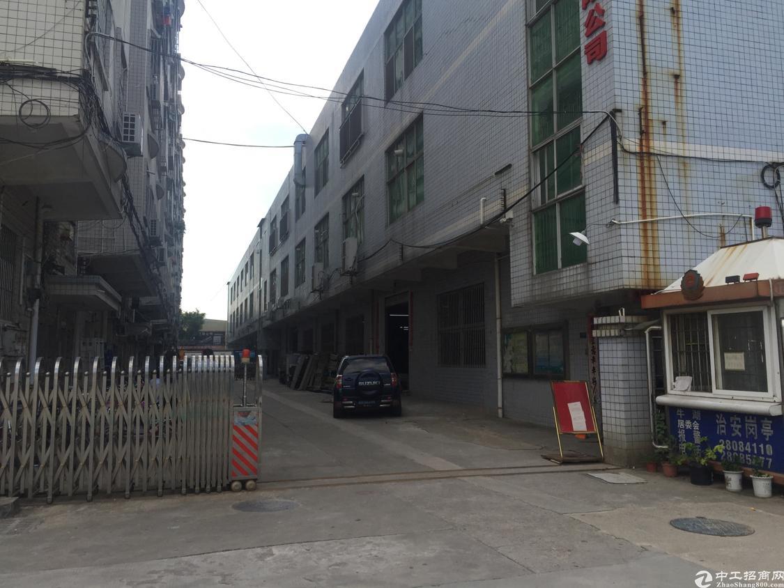 观澜清平高速出口大水田新出带装修厂房