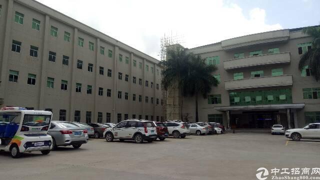 清溪三中村新出一楼1450平米带装修办公室一楼7米高标准厂房