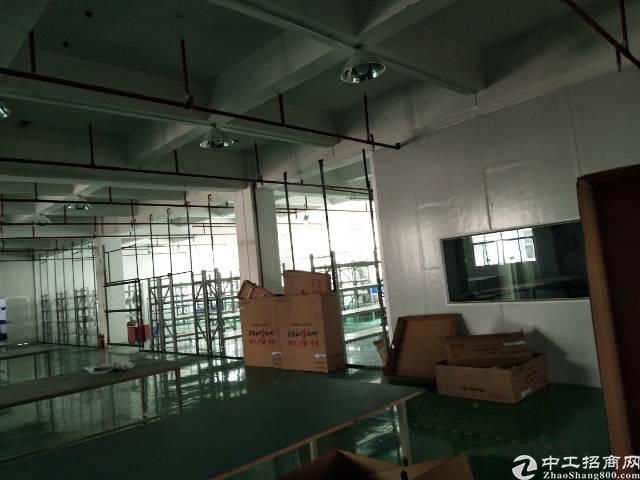 观澜近龙华高速出口有装修厂房出租