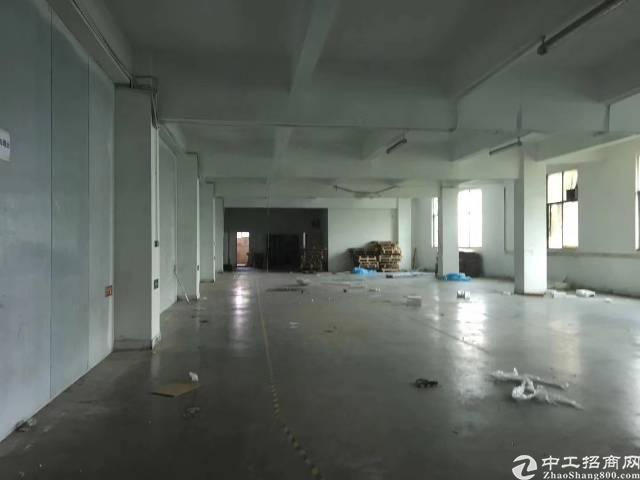 平湖华南城新出独院8000平方红本厂房-图6