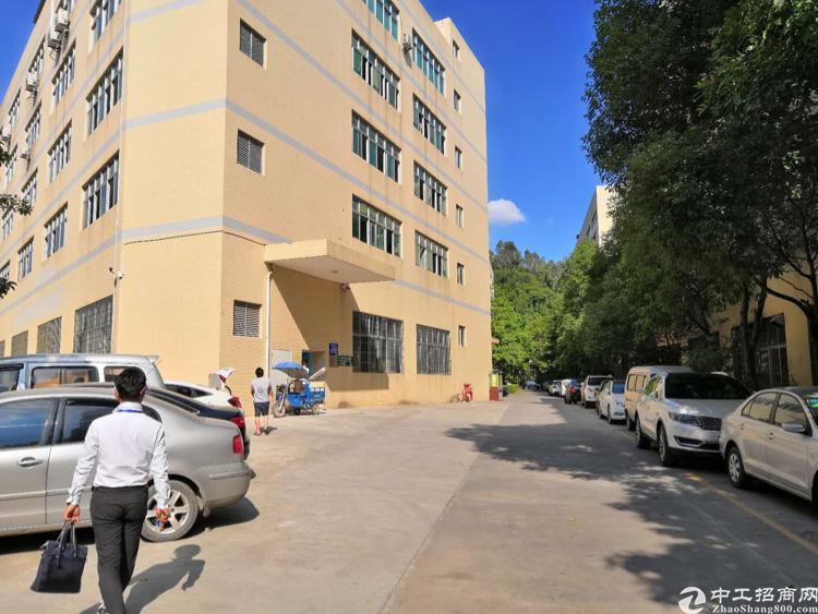 西丽白芒关口新出楼上200平厂房招租-图3