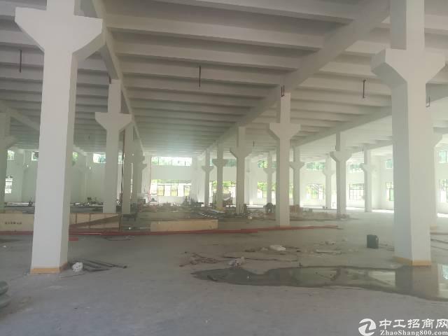 茶山新出一楼标准厂房2300平